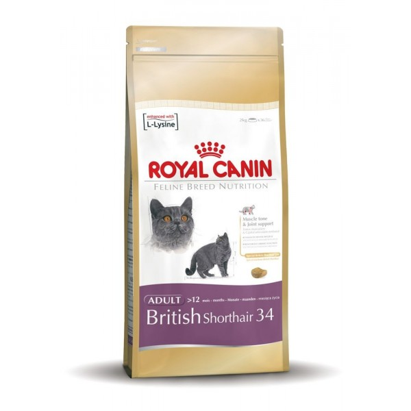 Royal Canin British Shorthair 34 2kg 670