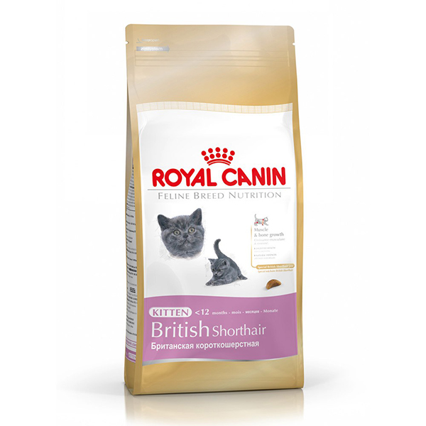 Royal Canin British Shorthair Kitten za mačiće 2kg 661